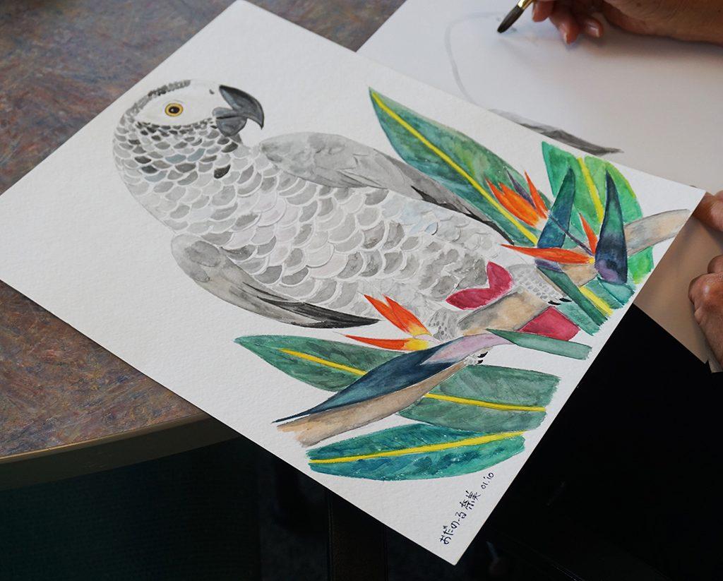 Parrot Lr
